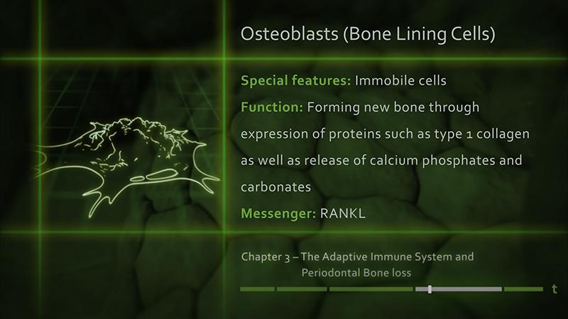 3D-Animationsfilm | Osteoblast