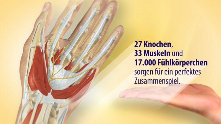 Erklärfilm, Patienteninformationsfilm | Handchirurgie